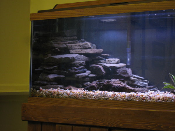 Aquarium decorations rock wall slate rock aquarium i for Aquarium waterfall decoration